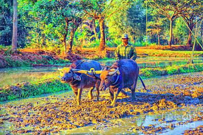 Photograph - Plowing Forward by Rick Bragan