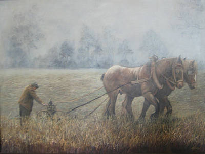 Plowing It The Old Way Art Print by Donna Tucker