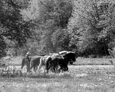 Photograph - Plowing The Old Way 1  by George Jones