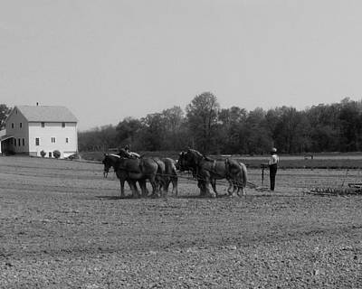 Photograph - Plowing The Old Way 2 by George Jones
