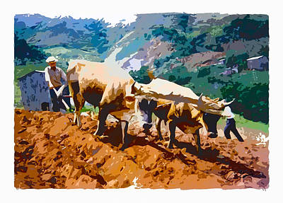 Digital Art - Plowing With Oxen by Charlie Roman