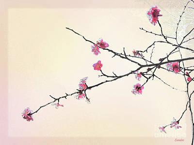 Photograph - Plum Blossom by Eena Bo