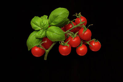 Photograph - Plum Cherry Tomatoes Basil by David French