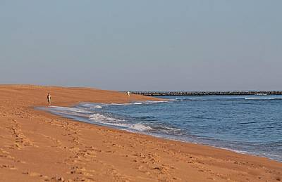 Photograph - Plum Island Beach In Ma by Michael Saunders
