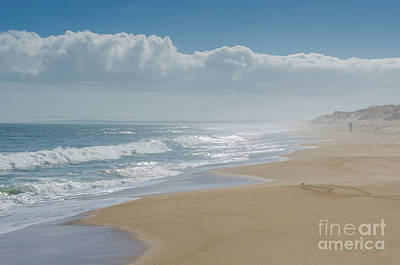 Photograph - Plum Island Beach by Mike Ste Marie
