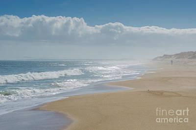 Photograph - Plum Island Beach by Mike Ste Marie