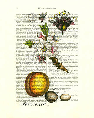 Plum Fruit And Blossom Plant Antique Illustration Art Print