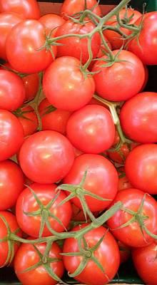 Photograph - Plum Tomatoes by Mudiama Kammoh
