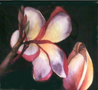 Yucatan Painting - Plumeria Duet by Jacquie King