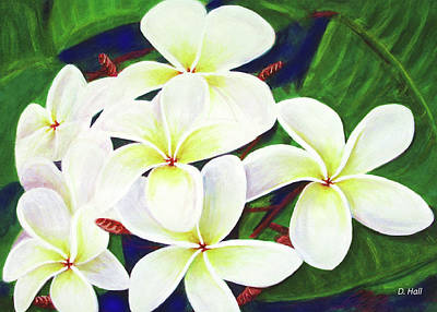 Plumeria Flower #289 Art Print by Donald k Hall