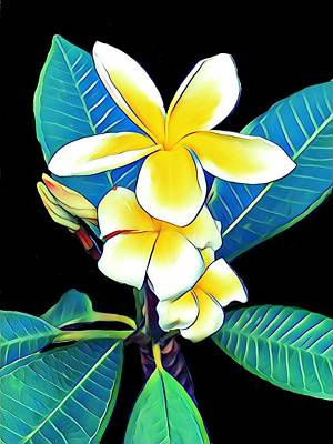 Photograph - Plumeria by Gini Moore