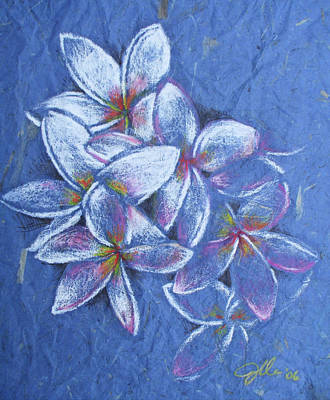 Plumeria Art Print by Jennifer Bonset