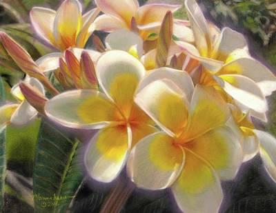 Pastel - Plumeria by Melissa Herrin