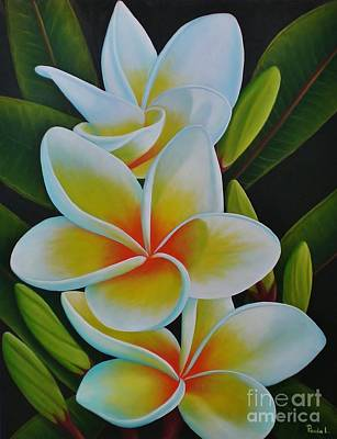Art Print featuring the painting Plumeria by Paula L