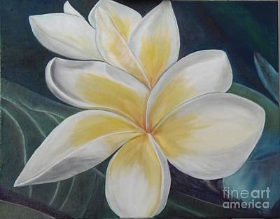 Painting - Plumeria Study by Isabel Honkonen