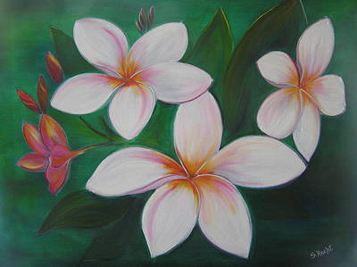 Fragipani Painting - Plumerias by Shelley Hecht