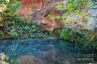 Photograph - Plunge Pool by Richard Smith