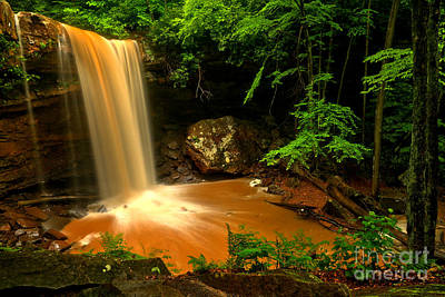 Photograph - Plunging Into The Ohiopyle Forest by Adam Jewell