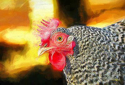 Plymouth Barred Rock Portrait Art Print