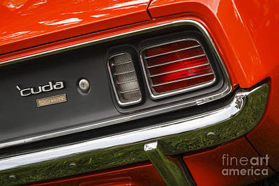 Photograph - Plymouth Cuda by Dennis Hedberg