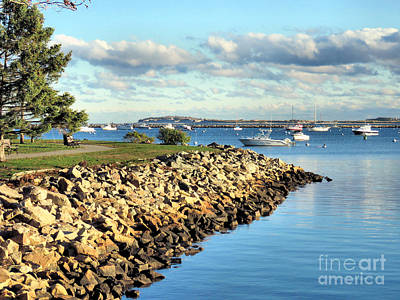 Photograph - Plymouth Harbor Coastline  by Janice Drew