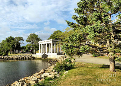 Photograph - Plymouth Rock Canopy In July  by Janice Drew