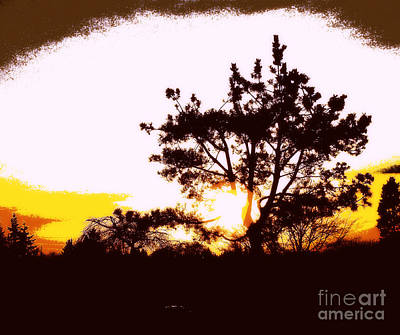 Photograph - Pnw Sunset by Eve Penman
