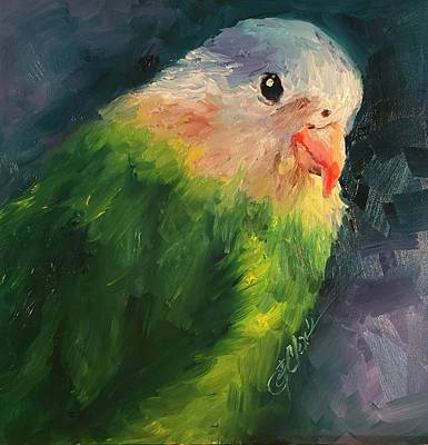 Painting - Pocket Parrot by Donna Pierce-Clark
