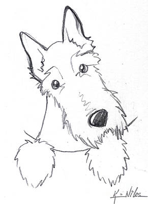 Scottish Dog Drawing - Pocket Scottie Sketch by Kim Niles