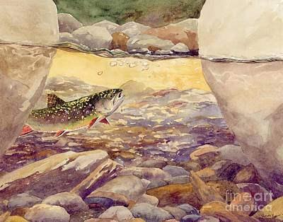 Pocket Water Brook Trout Art Print by Trevor Lewis