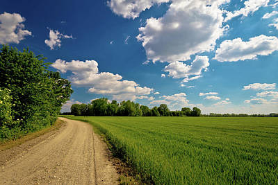 Photograph - Podravina Region Field And Road by Brch Photography