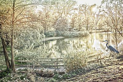 Suggestive Photograph - Poetic Landscape - Silent Evening At The Pond by Gabriele Pomykaj