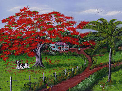Poinciana Blvd Art Print by Luis F Rodriguez