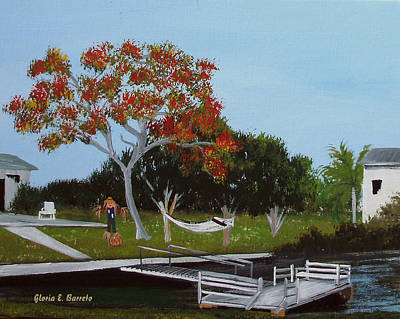 Poinciana In Hernando Beach Art Print