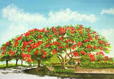 Wall Art - Painting - Poinciana Splendor by Terry Arroyo Mulrooney