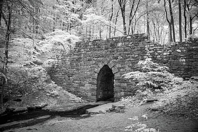 Photograph - Poinsett Bridge-ir-2 by Joye Ardyn Durham