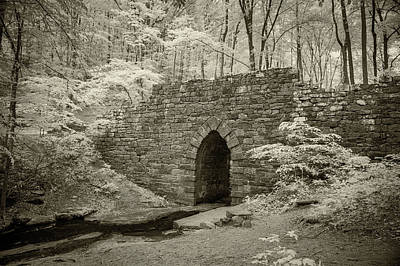 Photograph - Poinsett Bridge-ir-3 by Joye Ardyn Durham