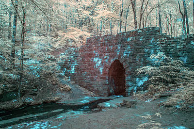 Photograph - Poinsett Bridge-ir-4 by Joye Ardyn Durham