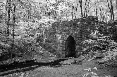 Photograph - Poinsett Bridge-ir-5 by Joye Ardyn Durham