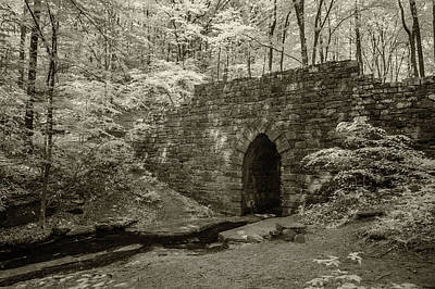 Photograph - Poinsett Bridge-ir-6 by Joye Ardyn Durham