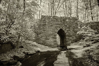 Photograph - Poinsett Bridge-ir-8 by Joye Ardyn Durham