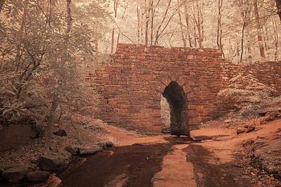 Photograph - Poinsett Bridge-ir-9 by Joye Ardyn Durham