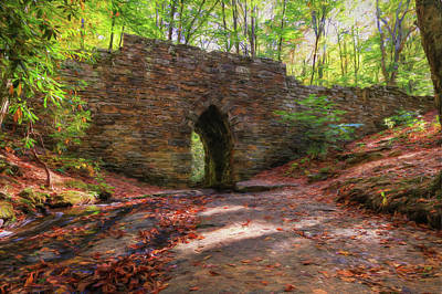 Photograph - Poinsett Bridge Sc by Frank G Montoya