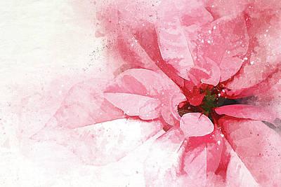 Digital Mixed Media - Poinsettia Abstract by Terry Davis