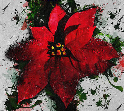 Digital Art - Poinsettia by Charlie Roman