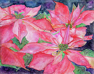 Painting - Poinsettia by Janet Immordino