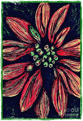 Flora Drawing - Poinsettia by Sarah Loft