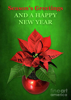 Mixed Media - Poinsettia Season's Greetings by Gabriele Pomykaj