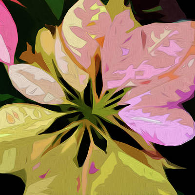 Digital Art - Poinsettia Tile by Gina Harrison