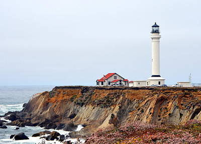 Photograph - Point Arena Lighthouse by Carla Parris